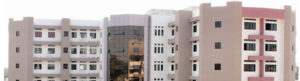 D. Y. Patil College of Nursing